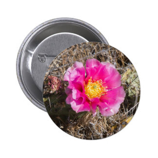 Pink Prickly Pear Flower Gift Pin