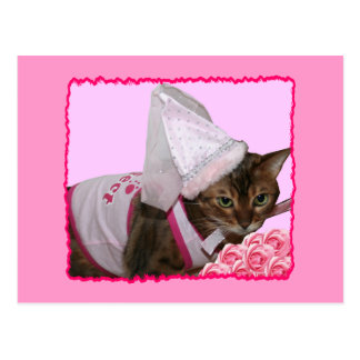 Pink Princess Cat Postcard