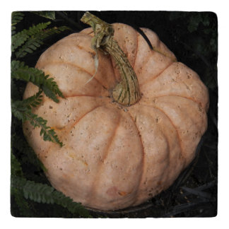 Pink Pumpkin Photo Stone Trivet