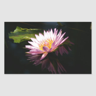 Pink Purple Lotus Waterlilies Rectangular Sticker