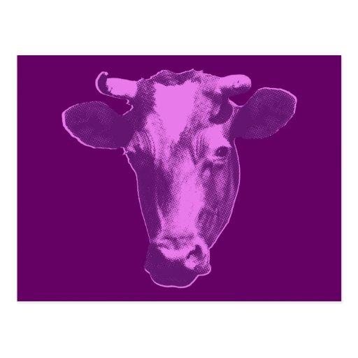 Pink & Purple Retro Cow Graphic Postcard