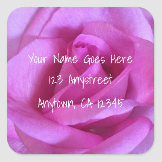 Pink purple rose close-up photo custom address square sticker