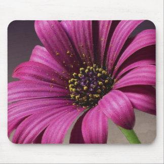 Pink Purple Vines Flowers Blossoms Love Peace Art Mouse Pad
