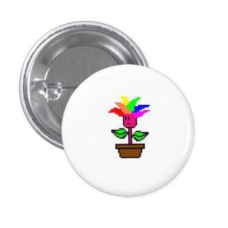 Pink Rainbow Plant Button