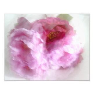Pink Ranunculus Bush in Abstract Photo Print