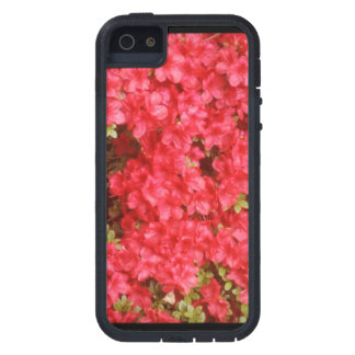 Pink/Red Flowers iPhone 5 Cases