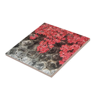 Pink red ivy leaves autumn stone wall ceramic tile