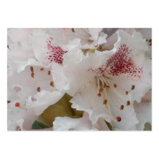 Pink Rhododendron Flower Closeup 5 Business Card Templates