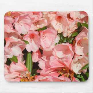 Pink rhododendron flowers mouse pad