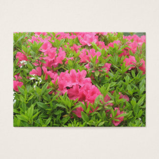 Pink rhododendron spring flower business card