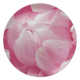 Pink romance blooming peony flower with dew drops dinner plate
