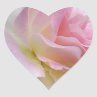 Pink rose and meaning stickers
