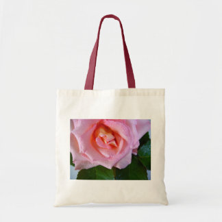 Pink Rose Blossoms Vines Peace Love Water Dewdrops Bags
