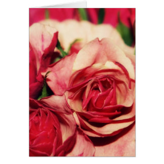 Pink Rose Bouquet Fine Art Photograph Greeting Card