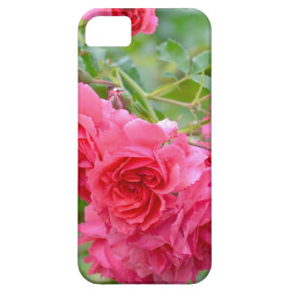 Pink  Rose Bouquet iPhone 5 Covers