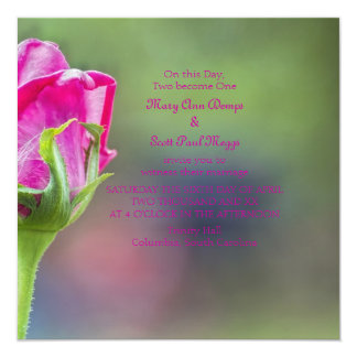 "Pink rose bud 5.25"" square invitation card"