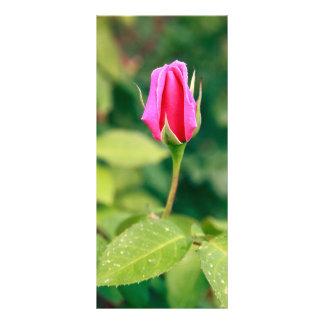 Pink rose bud custom rack card