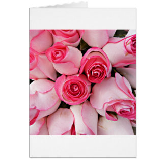 Pink rose buds cards