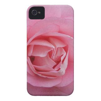 Pink Rose iPhone 4 Case