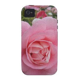 Pink Rose iPhone 4/4S Cover