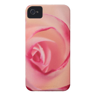Pink Rose Case-Mate iPhone 4 Case