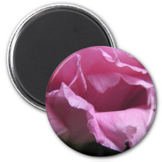 """""""Pink Rose""""  Collection 6 Cm Round Magnet"""