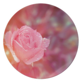 Pink rose covered by morning dew plate