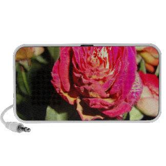 pink rose ddl laptop speakers