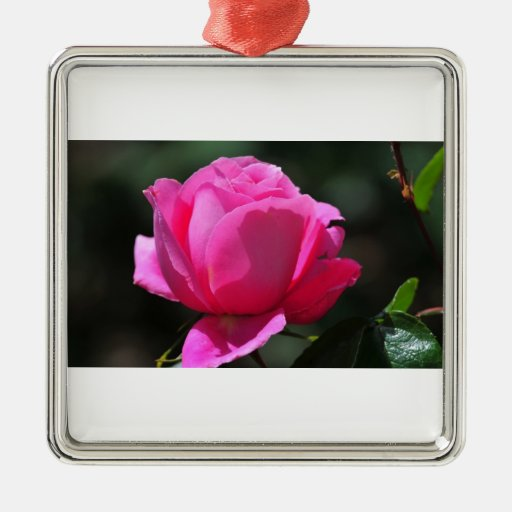 Pink Rose Christmas Tree Ornament