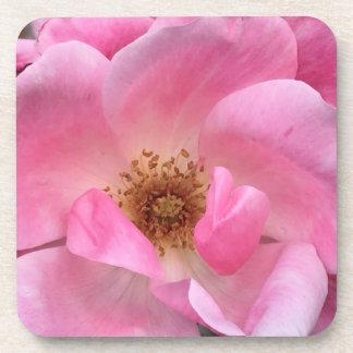Pink Rose Drink Coasters