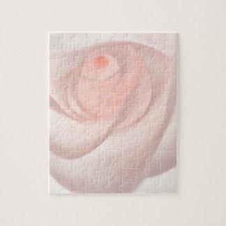 Pink Rose Eye Puzzle