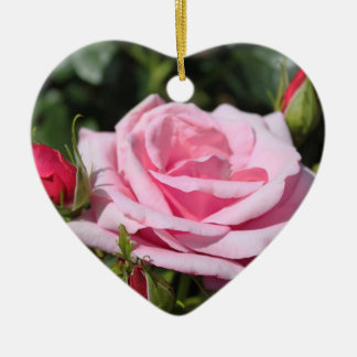 pink rose flowers happy birthday. love, girlfriend ceramic heart decoration