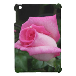 Pink rose flowers with water droplets in spring iPad mini case