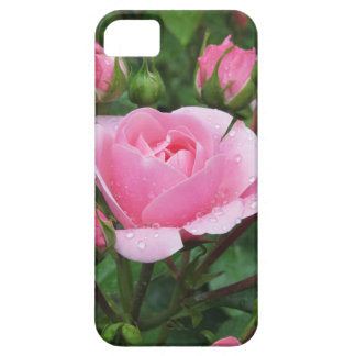 Pink rose flowers with water droplets in spring iPhone 5 case
