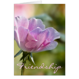 Pink Rose Friendship Card