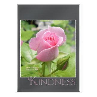 Pink Rose: Kindness Postcard