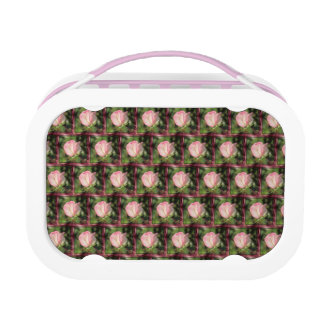 Pink Rose Lunch Box