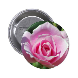 Pink Rose of Love 6 Cm Round Badge
