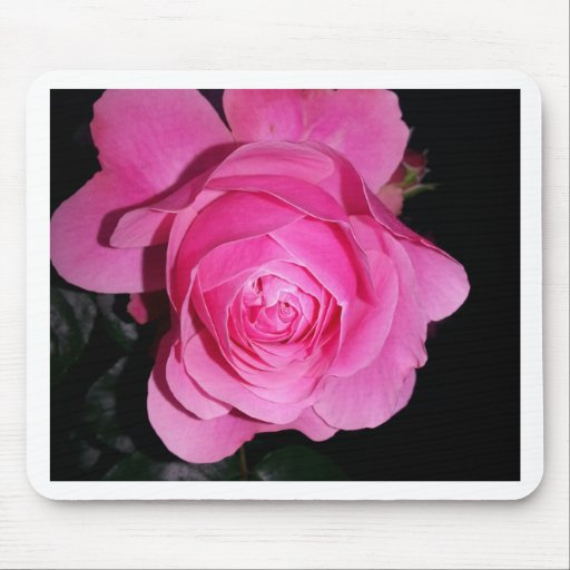 Pink Rose of Love Mouse Pad
