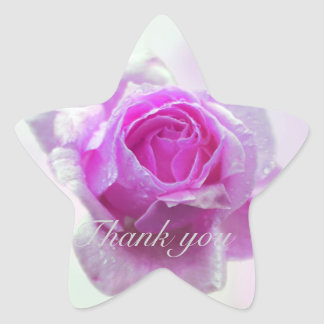 Pink Rose of love Star Stickers