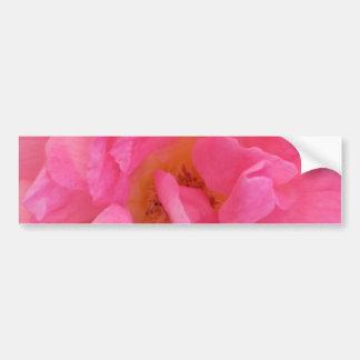 Pink Rose Petal Art  -  Theme Decorations Bumper Sticker