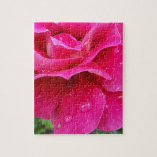 pink rose petals jigsaw puzzle