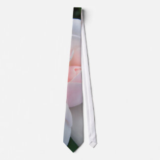 Pink Rose Photographic Tie