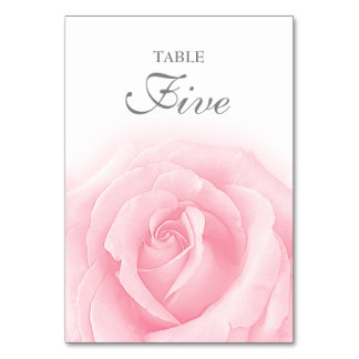 Pink Rose Romance Wedding Table Number 5