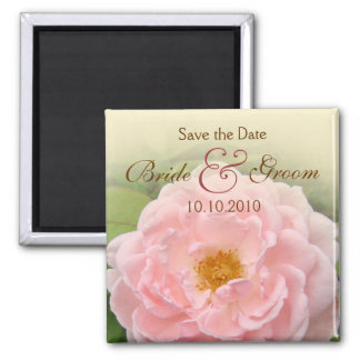 Pink Rose Save-The-Date Square Magnet