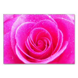 Pink Rose Table Cards