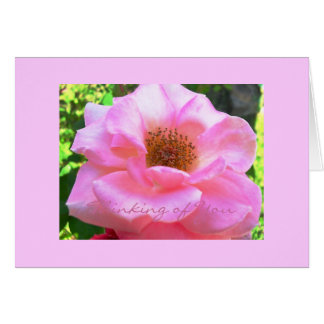 """pink rose""... Thinking of You Card. Card"
