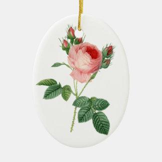 Pink rose vintage botanical illustration ceramic oval decoration