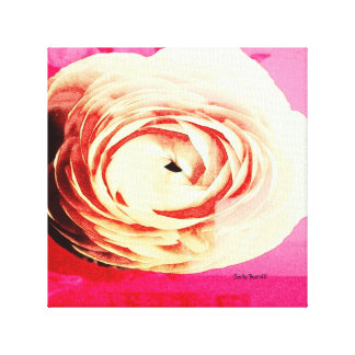 pink rose wall print gallery wrap canvas