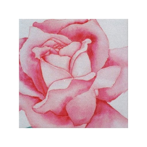 Pink Rose Watercolor cricketdiane canvas art Stretched Canvas Print